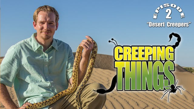 "Creeping Things ""Desert Creepers"""