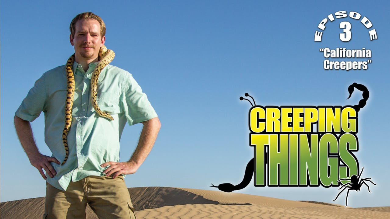 "Creeping Things ""California Creepers"""