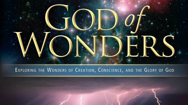 God of Wonders Trailer