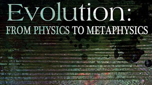 Evolution - From Physics to Metaphysics