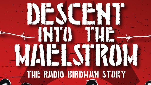 Radio Birdman - Descent Into The Maelstrom - film