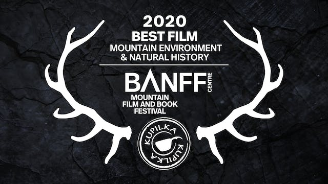 Best Film - Mountain Environment and ...