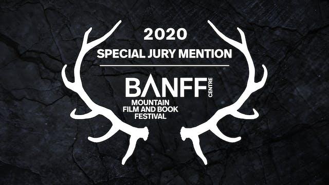 Special Jury Mention - Bear-Like Awar...