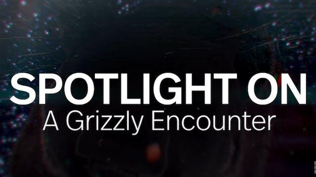 Spotlight: A Grizzly Encounter