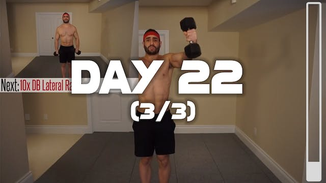 Day 22 (3/3): Deltoid Workout