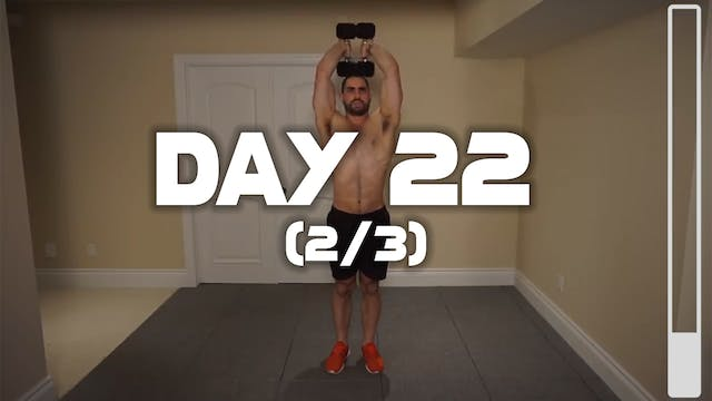Day 22 (2/3): Triceps Workout