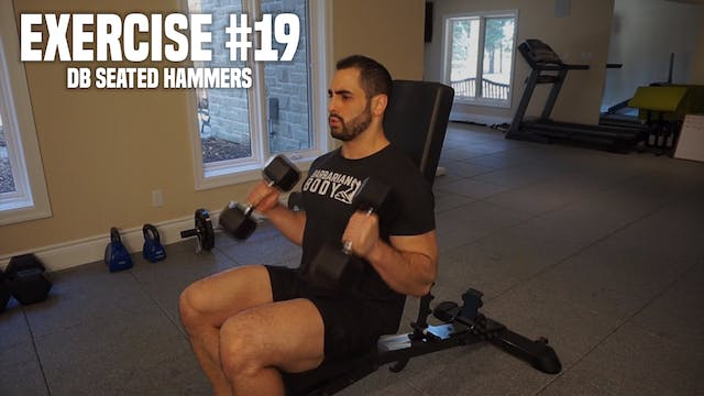 DB Seated Hammer Curls
