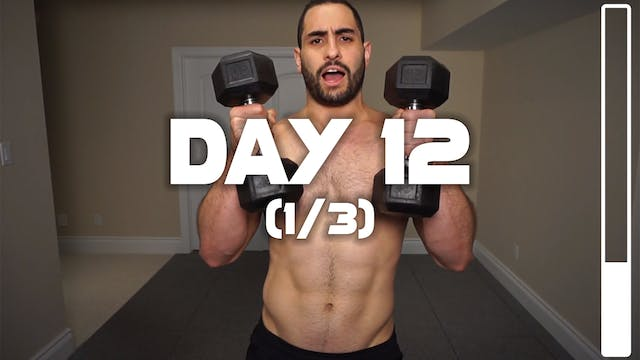 Day 12 (1/3): Chest & Arms Workout
