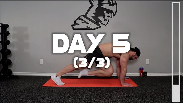 Day 5 (3/3): Lower Abdominal Workout