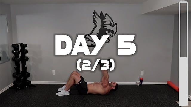 Day 5 (2/3): Biceps & Triceps Workout