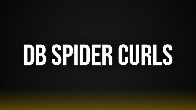 Dumbbell Spider Curls