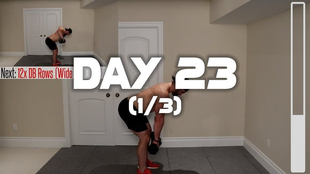 Day 23 (1/3): Back Workout