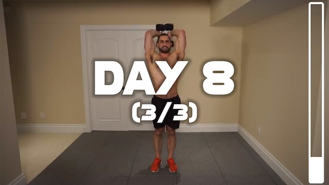 Day 8 (3/3): Triceps Workout