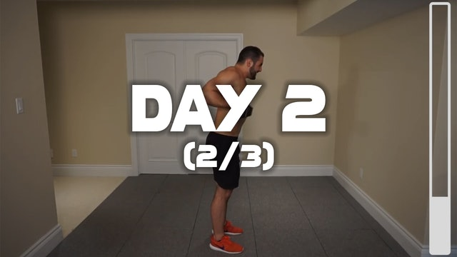 Day 2 (2/3):  Biceps Workout