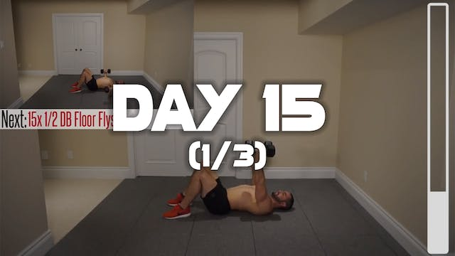 Day 15 (1/3): Chest & Triceps Workout