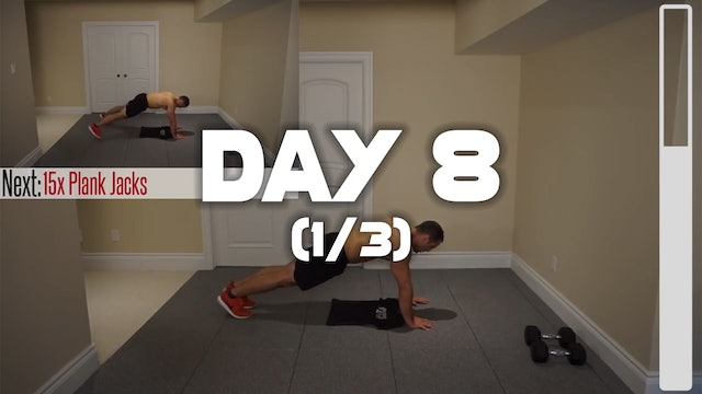 Day 8 (1/3): Chest & Abdominal Workout