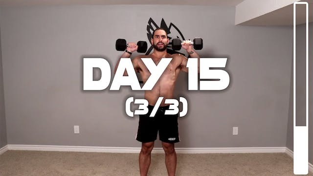 Day 15 (3/3): Full Body Muscle Buildi...