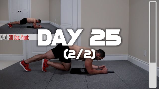 Day 25 (2/2): Lower Abs & Oblique Wor...