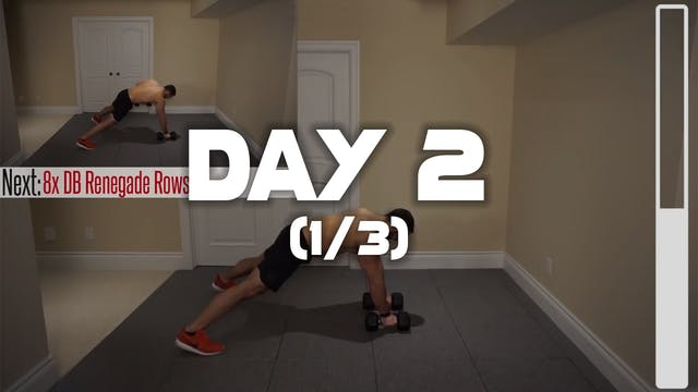 Day 2 (1/3): Back Workout