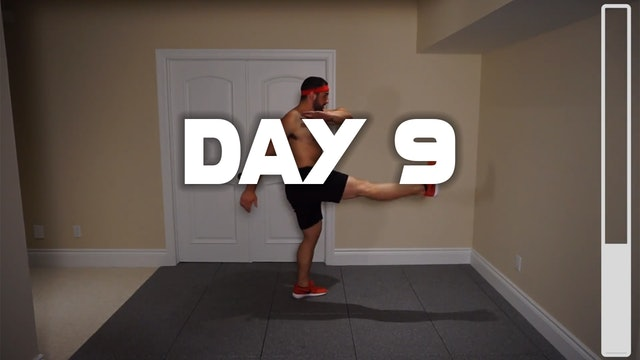 Day 9: Shredding Body Fat Workout