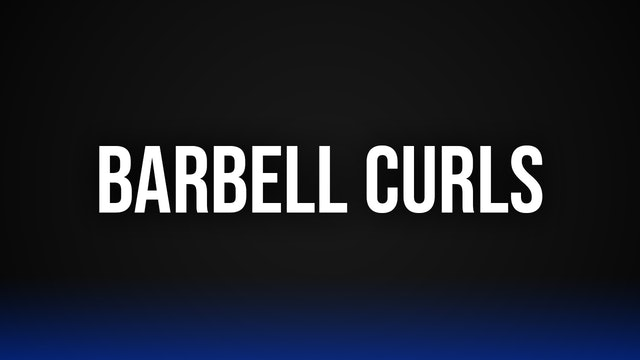 Standing Barbell Curls