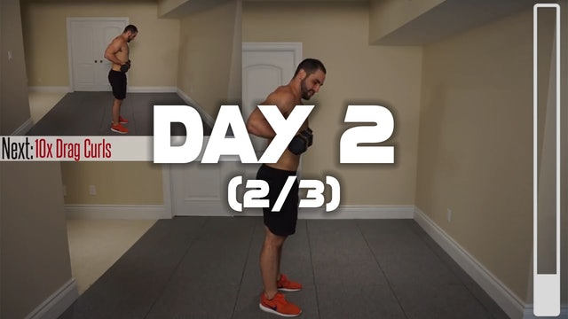 Day 2 (2/3):  Biceps Workout