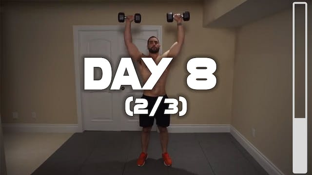 Day 8 (2/3): Deltoid Workout