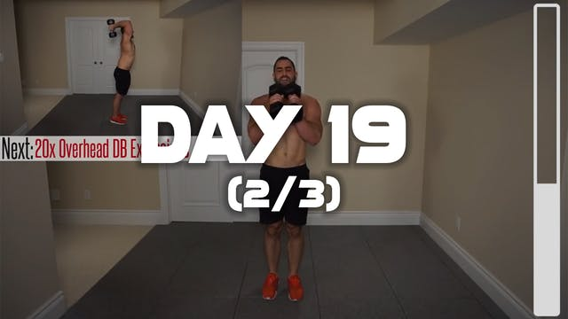 Day 19 (2/3): Chest & Arm Workout