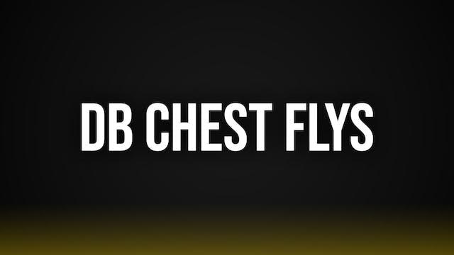 DB Chest Flys