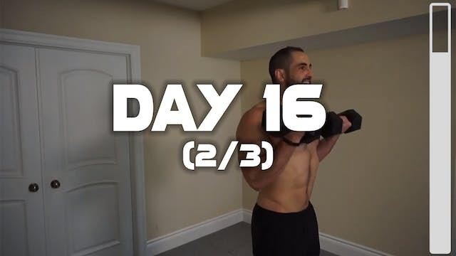 Day 16 (2/3): Biceps Workout