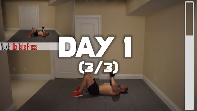 Day 1 (3/3): Triceps Workout