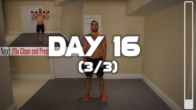 Day 16 (3/3): Shoulder & Traps Workout