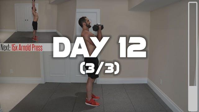 Day 12 (3/3): Shoulder Workout