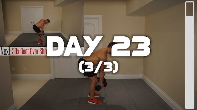 Day 23 (3/3): Shoulder & Traps Workout