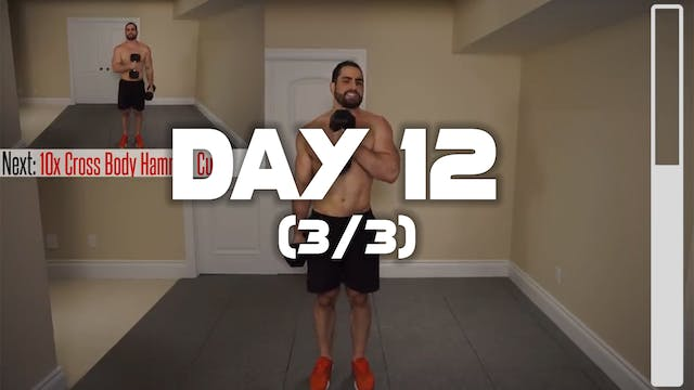 Day 12 (3/3)