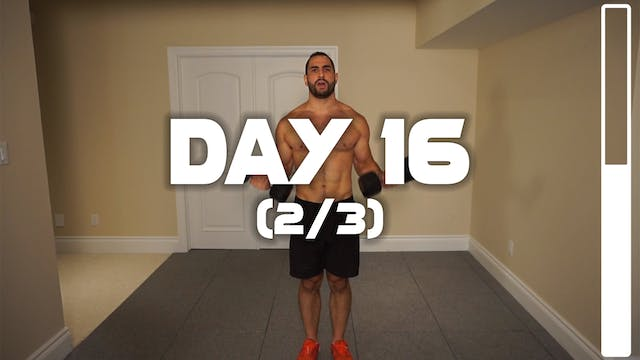Day 16 (2/3): Back & Biceps Workout