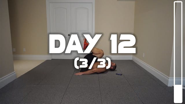 Day 12 (3/3): Lower Abdominal & Obliq...