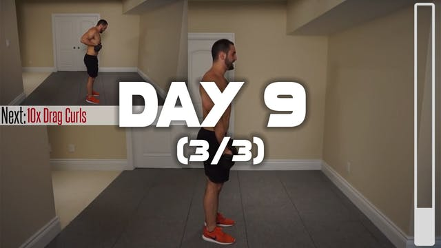 Day 9 (3/3): Biceps Workout
