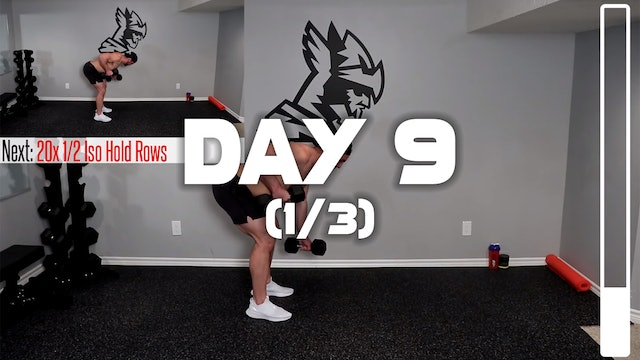 Day 9 (1/3): Back Workout