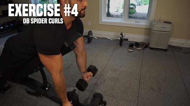 Dumbbell Spider Curls