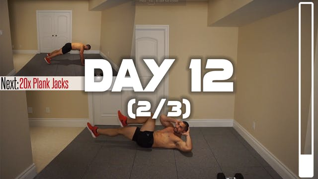 Day 12 (2/3): Chest, Abdominal & Bice...