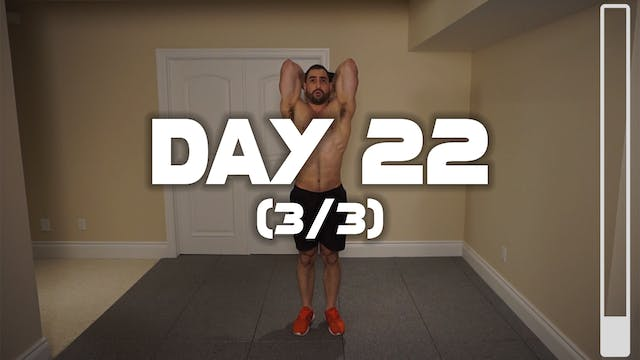 Day 22 (3/3): Triceps Workout