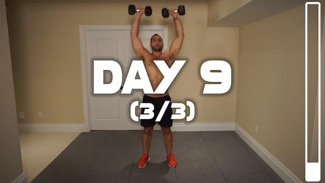 Day 9 (3/3): Shoulder & Traps Workout