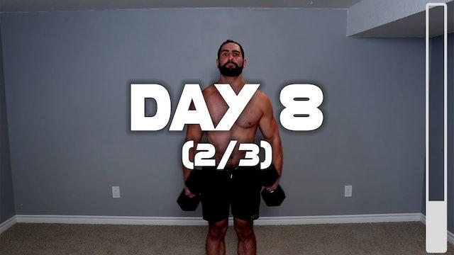 Day 8 (2/3): Shoulder Workout