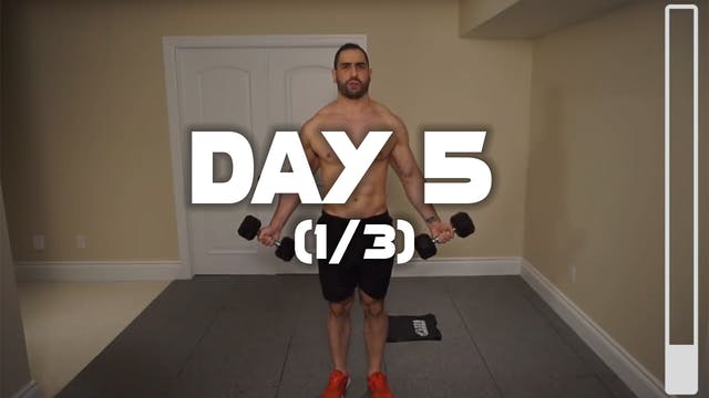 Day 5 (1/3): Chest & Triceps Workout