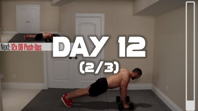 Day 12 (2/3): Chest Workout