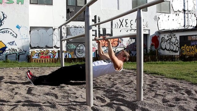 Bench dips - Full Body Workout Program - Calisthenics Unity
