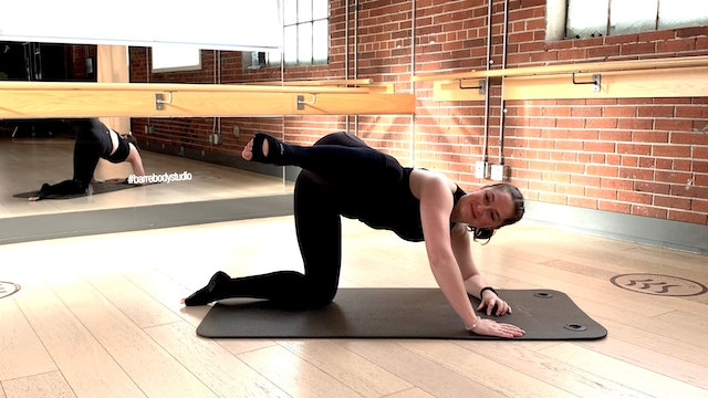 Barre Body Fit #4 with Crystal