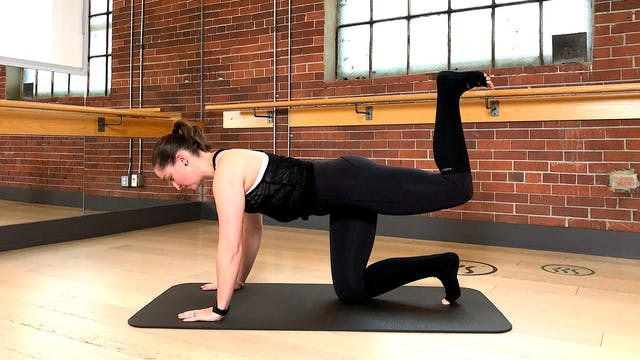 Barre Body Fit Low Impact with Crystal