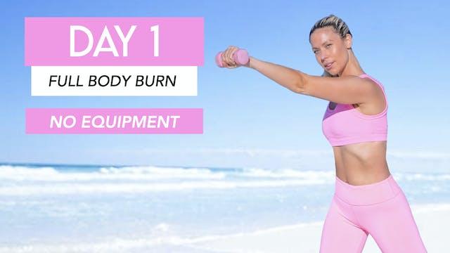 DAY 1- FULL BODY CARDIO BURN (NO EQUI...